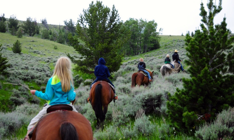 Horseback-ride-Red-Lodge1