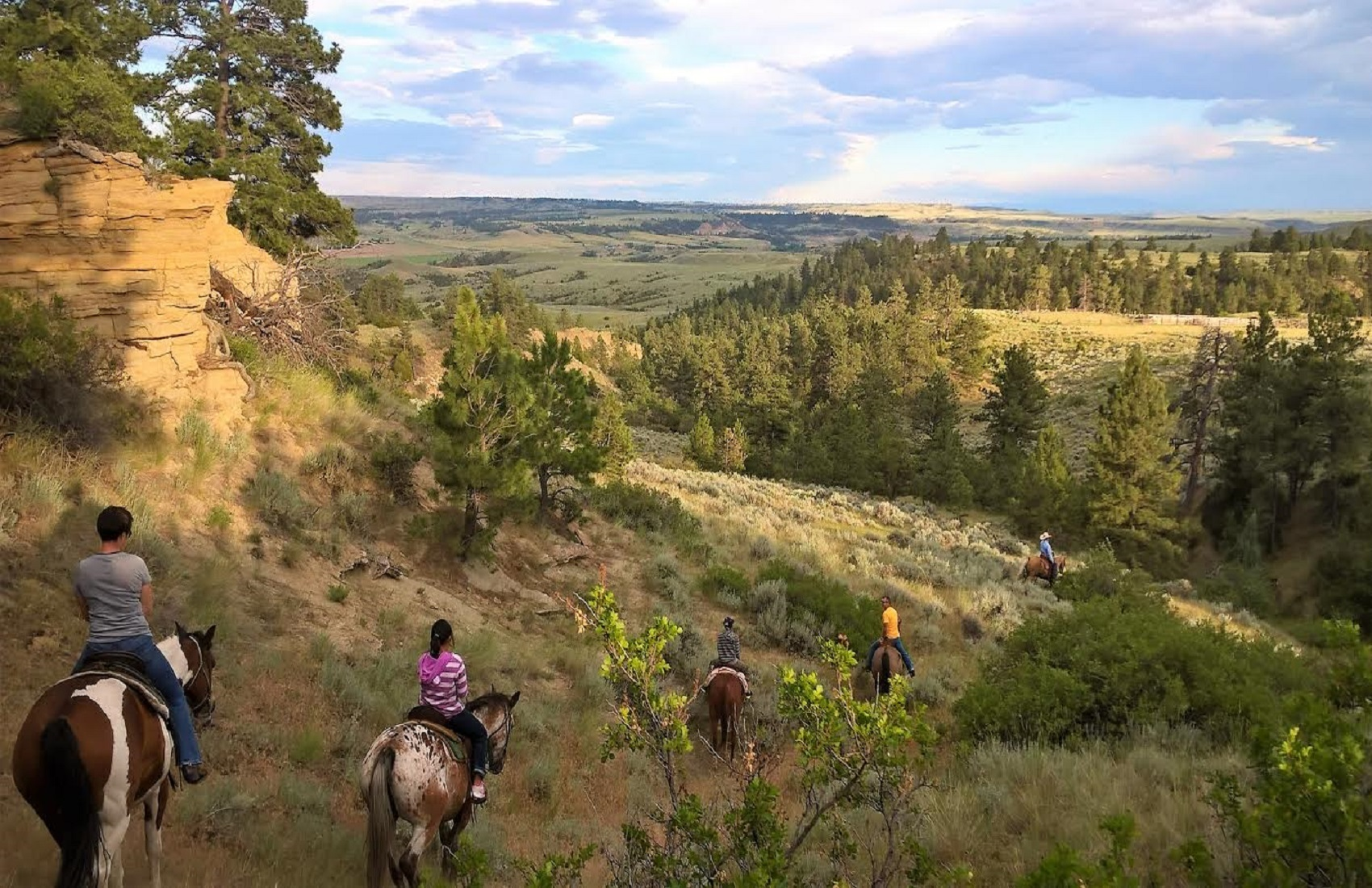 Billings Horseback rides new